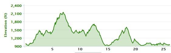 2014 blue ridge marathon profile